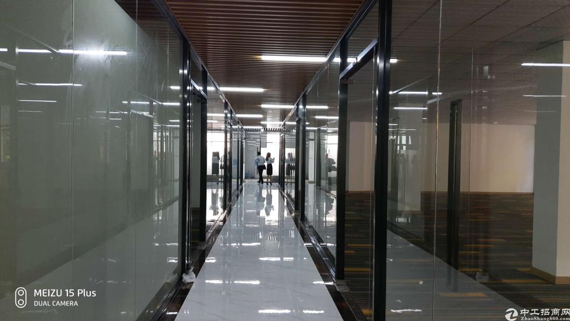 南山西丽白芒关口附近新出楼上520平米带精装修厂房出租