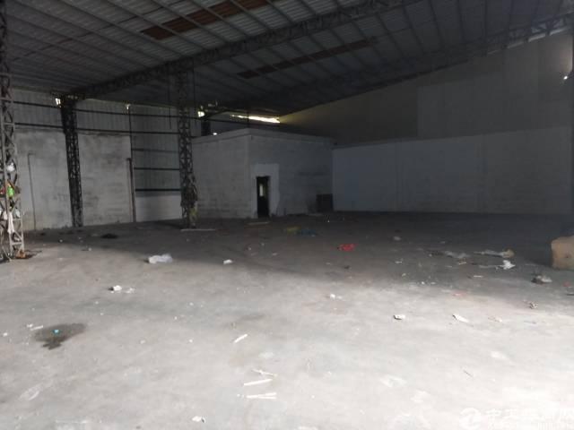 石岩新出一楼钢构厂房1000平方,26元