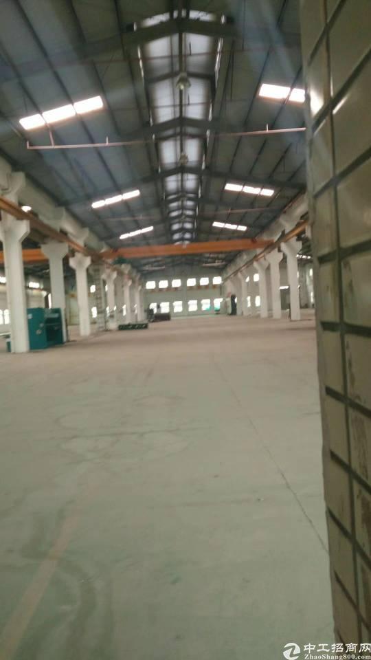 桥头镇新出独院钢构厂房