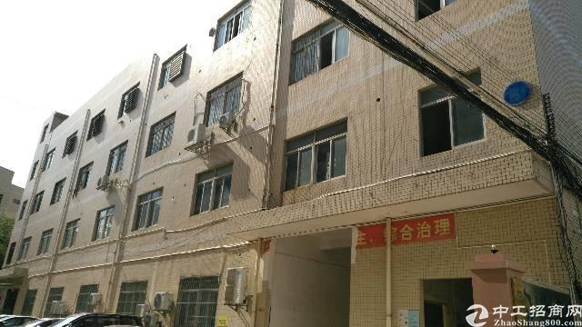龙岗南联大工业区新出独院标准厂房楼上三层6000平招租