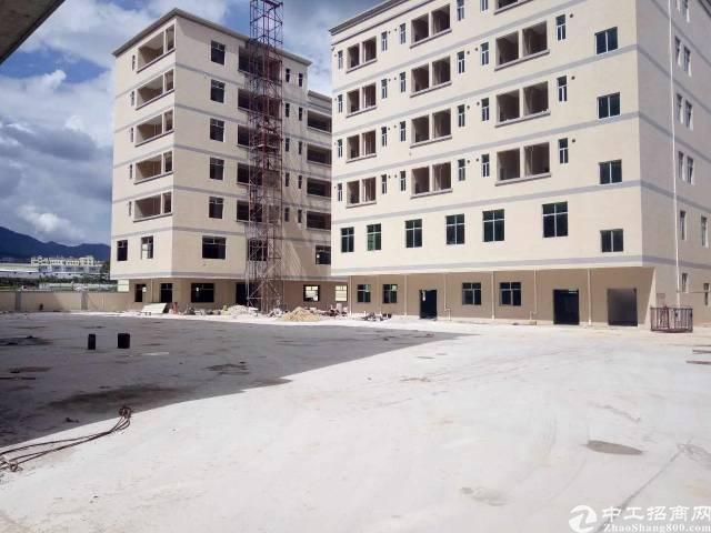 新圩靠近坪地独院21308平全新厂房低价出租