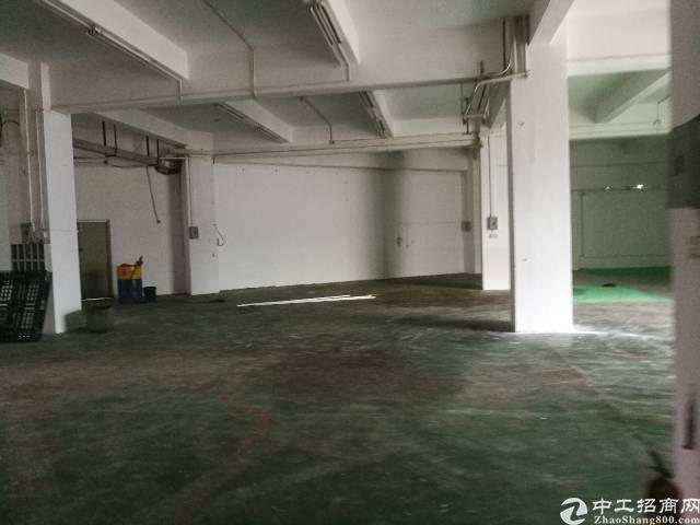 龙华清湖地铁站附近一楼800平厂房出租