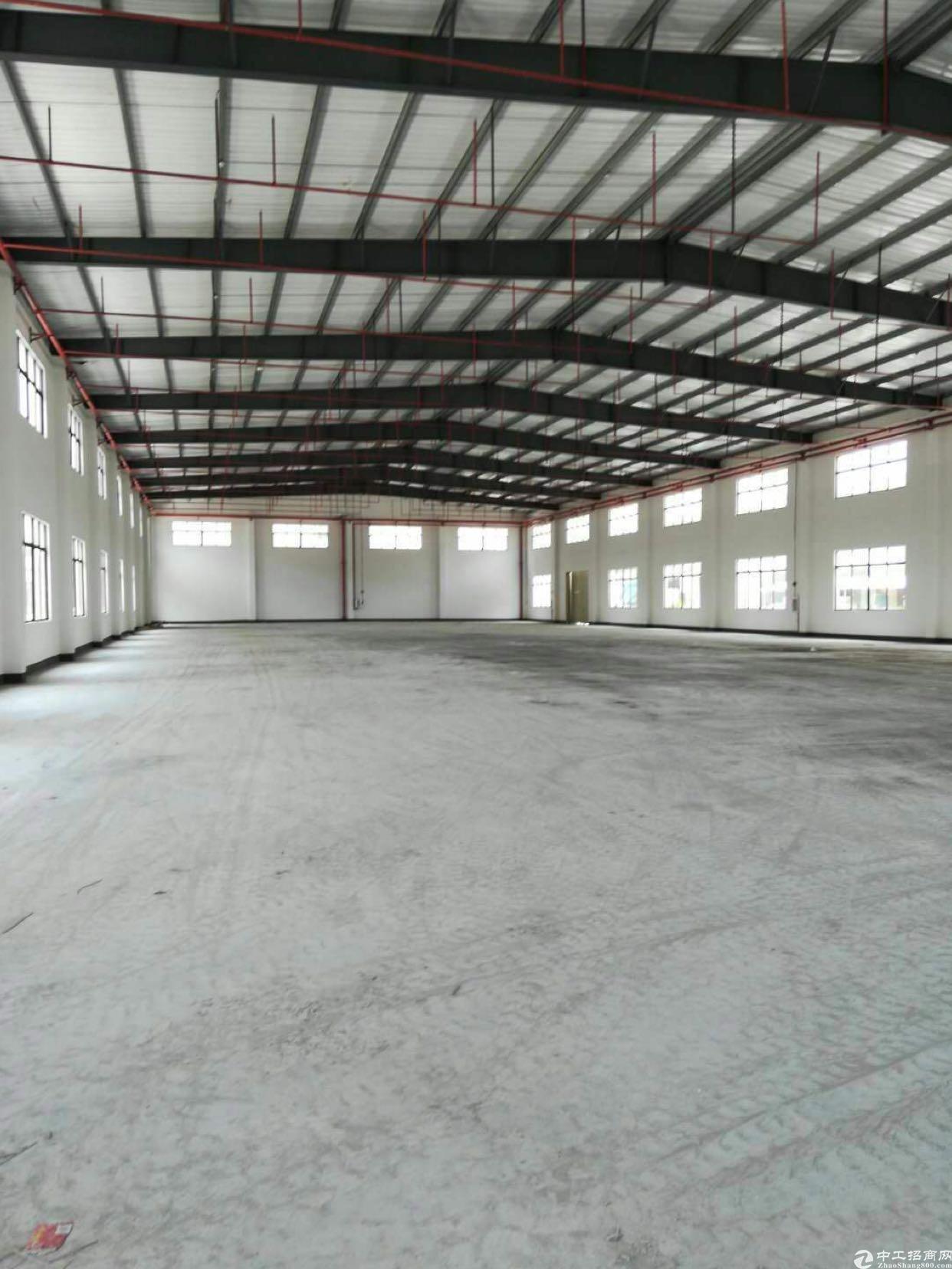 惠州市惠东县白花镇自建红本钢构厂房