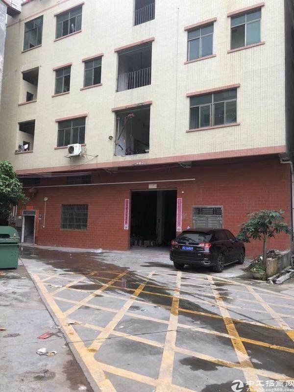 茶山标准厂房三层3300方宿舍1300方电按需整租12
