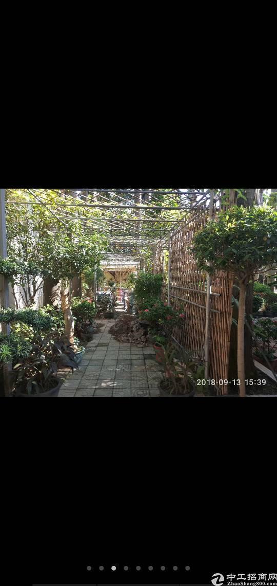 花园式厂房出租