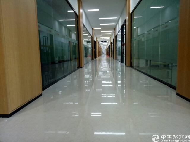 龙华清湖地铁旁中心区精装办公楼200-3000平方米招租-图2