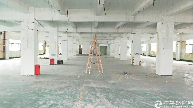 西乡固戍二路水产工业区1420平米厂房出租