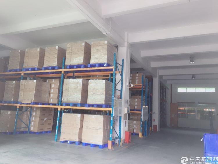 松岗罗田高速出口独院厂房500平米起租无公摊价格便宜-图2