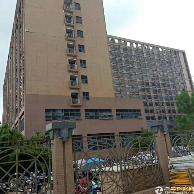 深圳市光明新区公明田寮12万平方高端带红本厂房写字楼招租