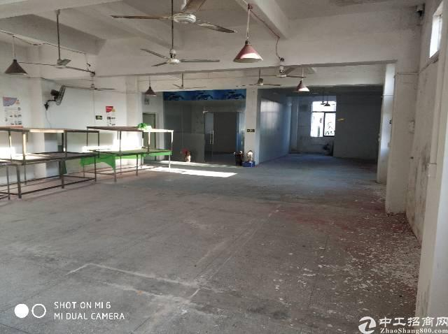 龙岗龙东沙背坜工业区标准厂房招租