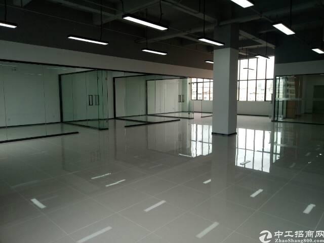 龙华清湖地铁旁中心区精装办公楼200-3000平方米招租-图4