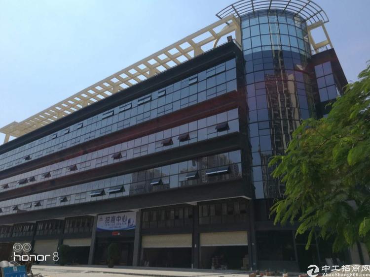 坂田新出电商园整栋房子豪华装修出租