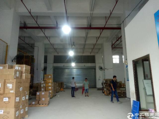 华南城附近新出1100平带卸货平台标准仓库