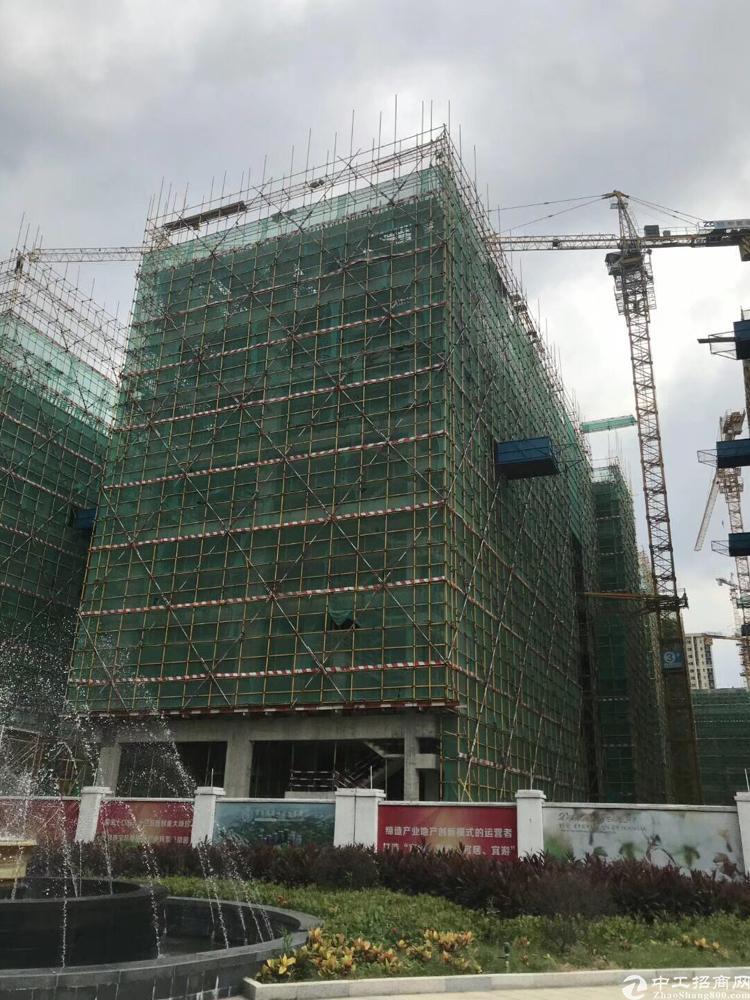 东莞常平高速出口国有证红本厂房出售全新独栋50年产权可分期付