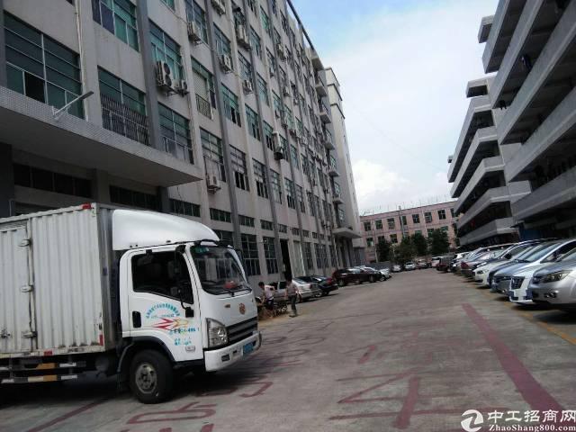 公明南光高速出口新出一楼整层带牛角厂房出租