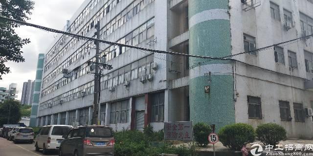 坂田吉华路新出带装修楼上1400平厂房出租可分租