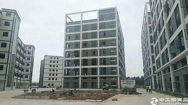 大岭山镇鸡翅岭工业园一楼900平方出租,适合仓库,贸易等行业