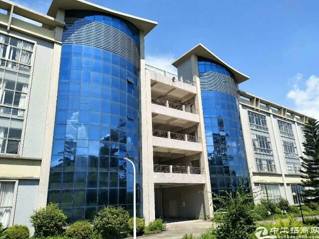 坪山大工业区新出独院厂房4层16000平米出租-图3