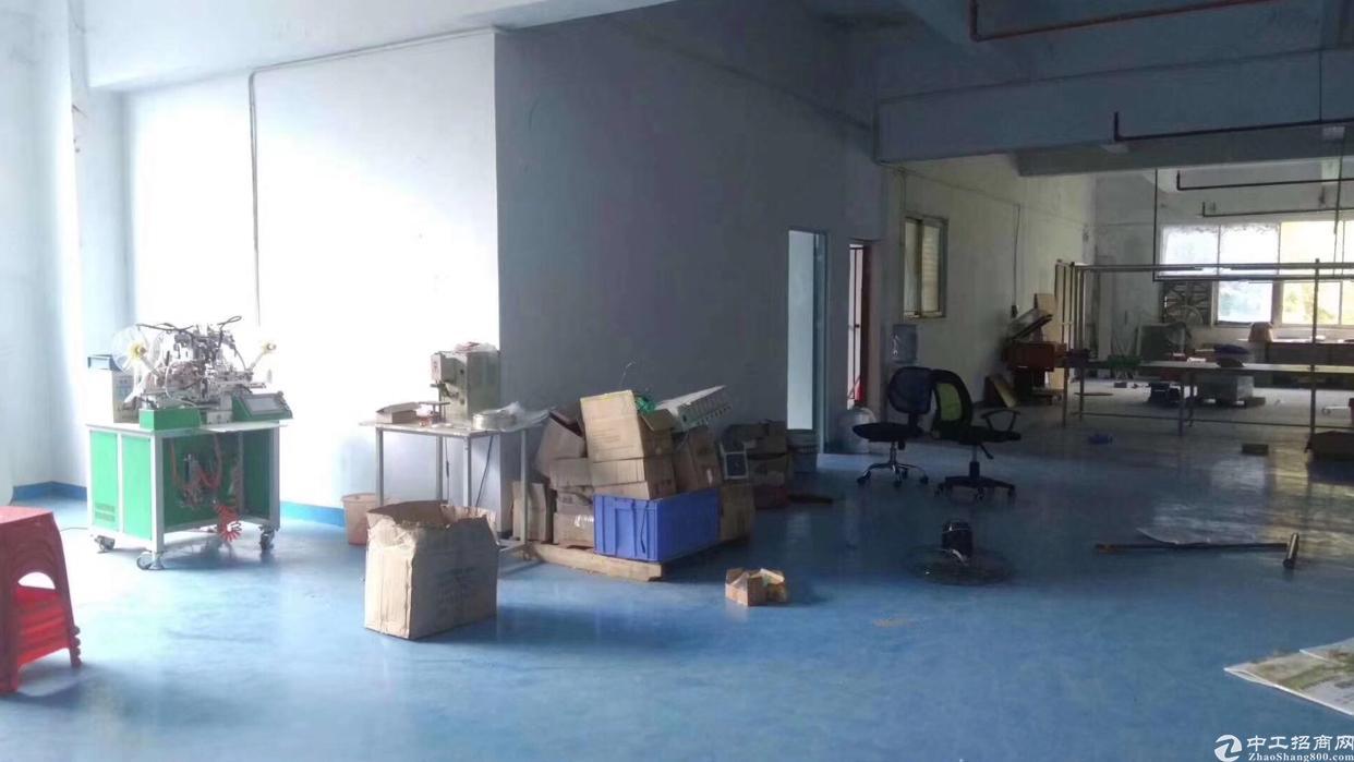 石岩外环新出厂房700平方米带装修-图2