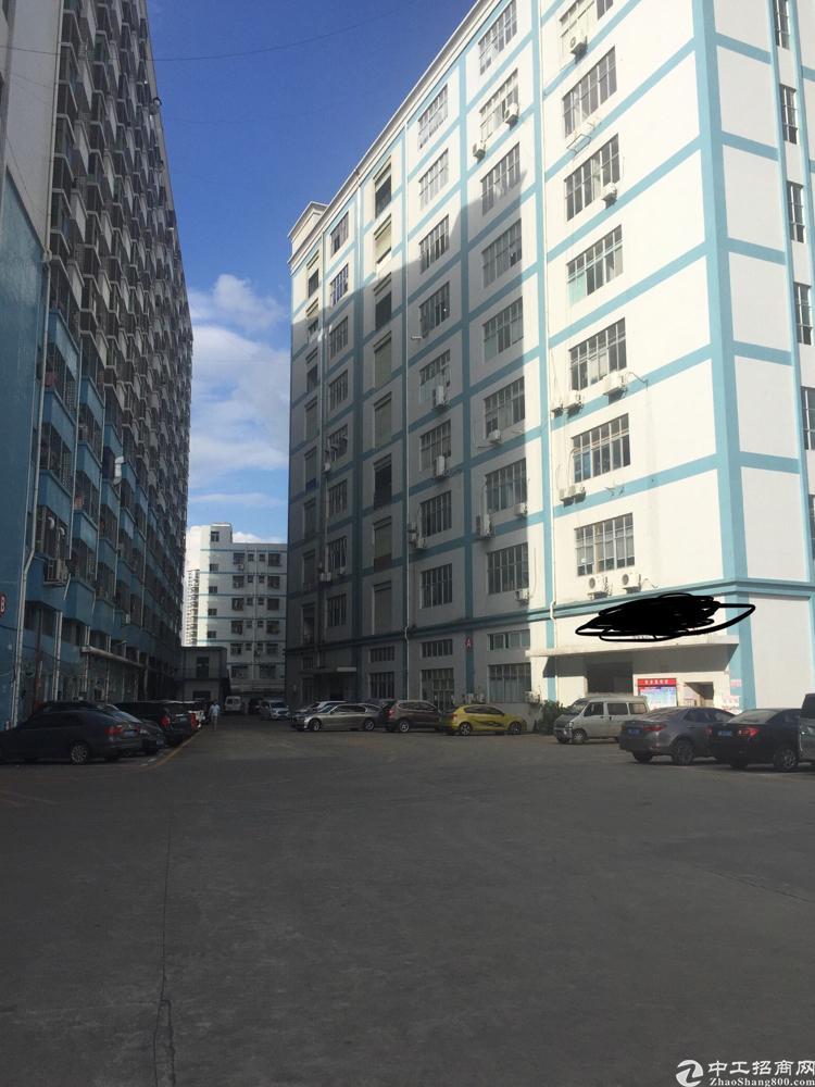 松岗江边新出楼上800平米标准厂房