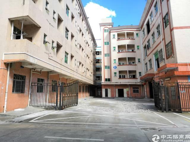 龙岗宝龙红本喷淋厂房可分租8600平-图3