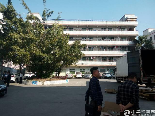 平湖新出独栋厂房4000平米厂房对外出租