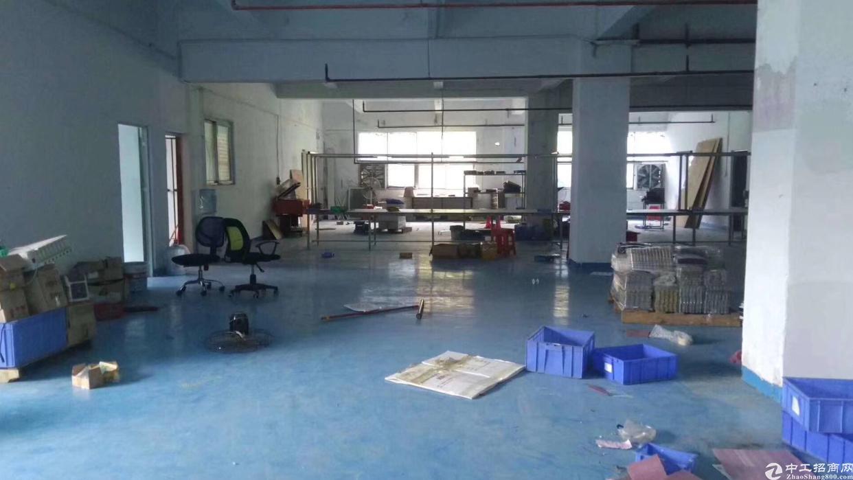 石岩外环新出厂房700平方米带装修-图5