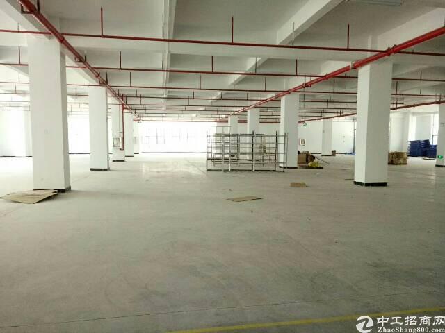 坪山大工业区新出独院厂房4层16000平米出租-图4