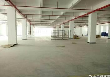 坪山大工业区新出独院厂房4层16000平米出租图片4