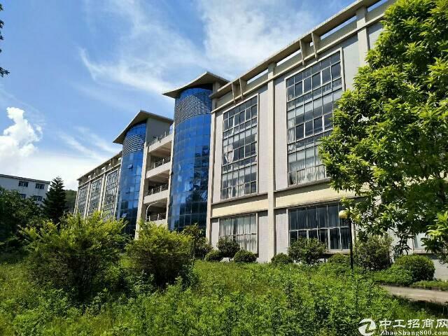 坪山大工业区新出独院厂房4层16000平米出租