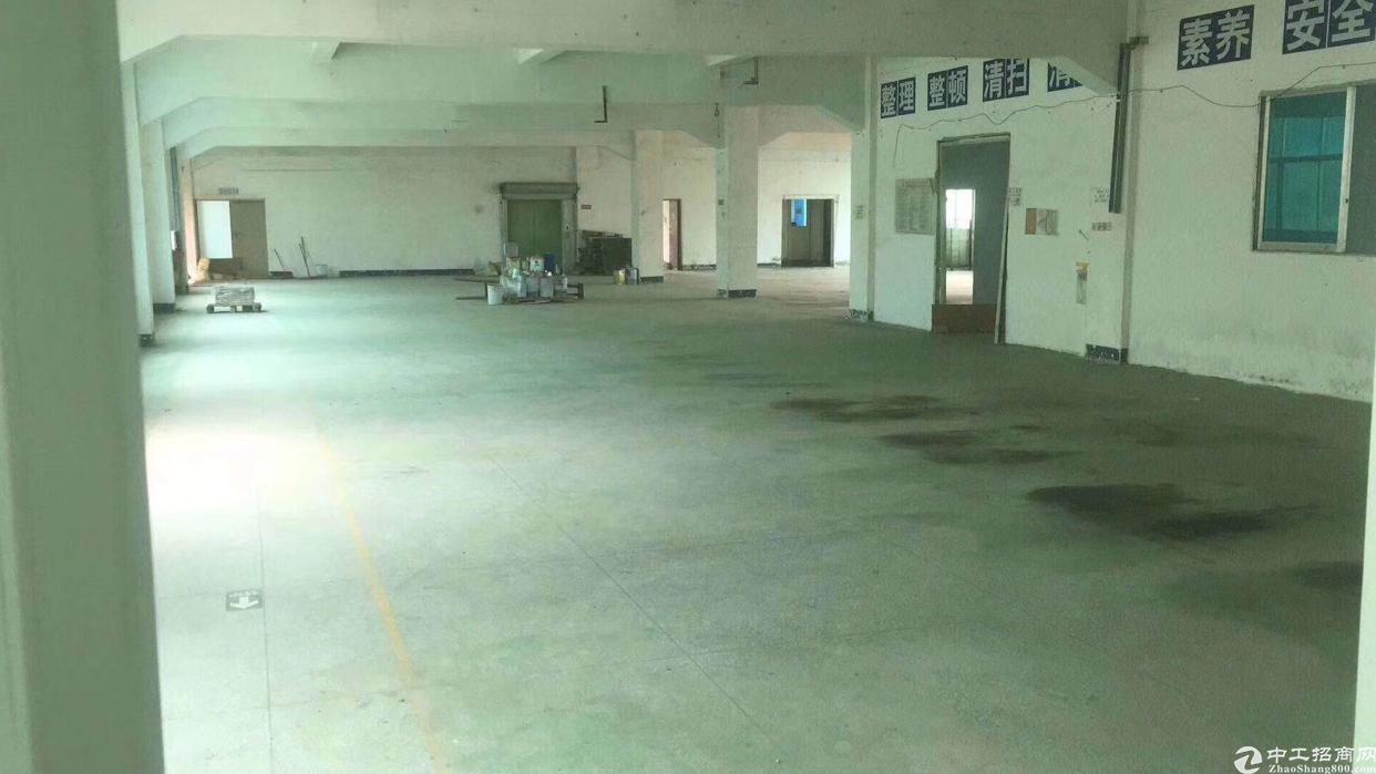 石岩外环新出厂房700平方米带装修-图6