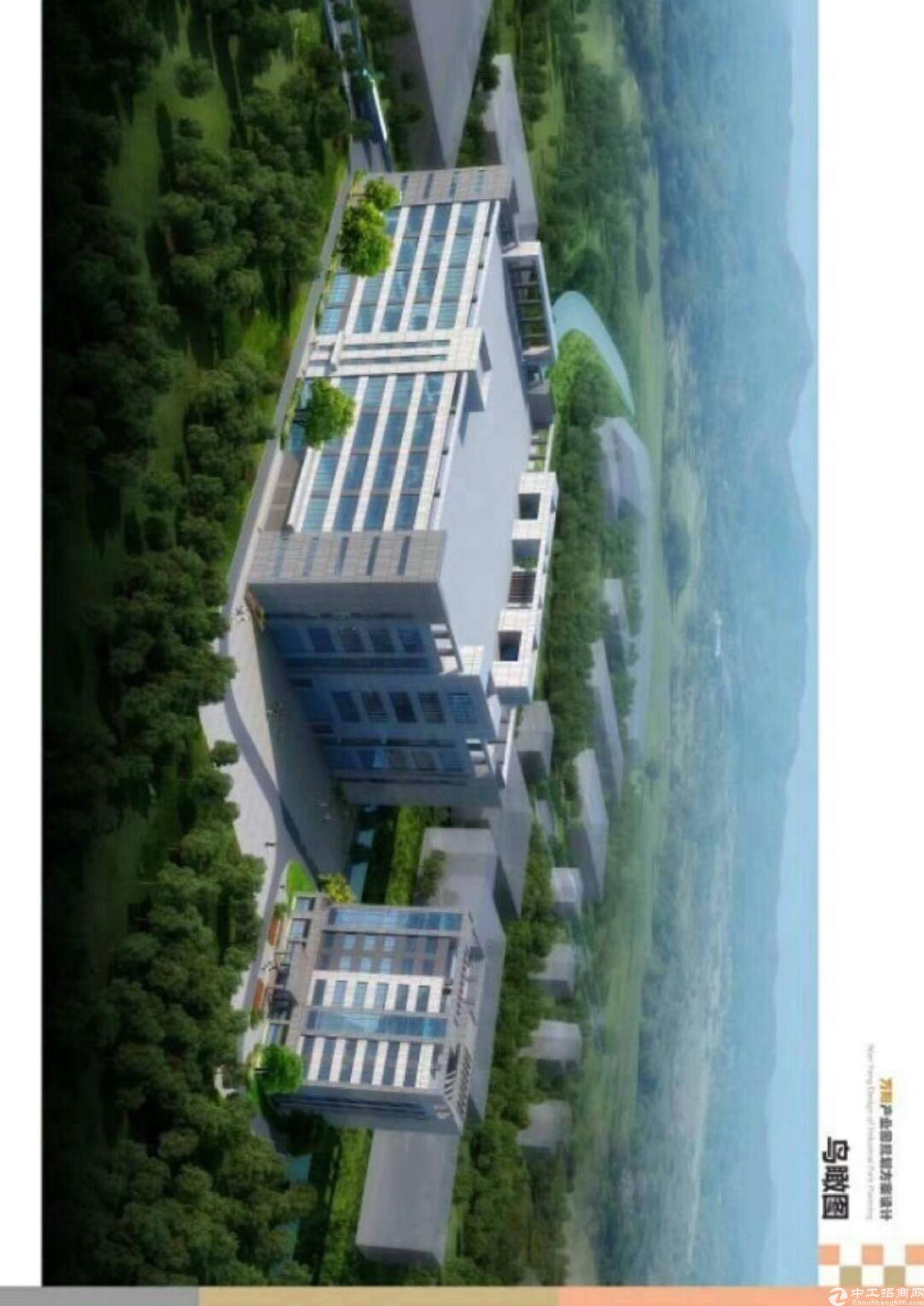 惠阳新圩原房东,红本离长深高速路口一公里,五万平方大小可分租