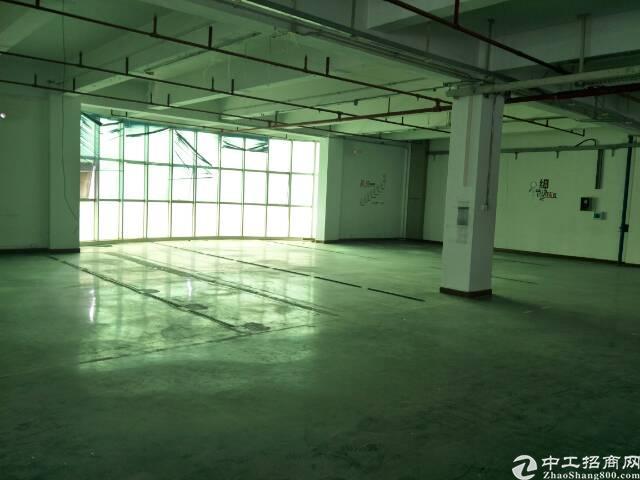 西乡臣田工业区附近2600平方租金30元