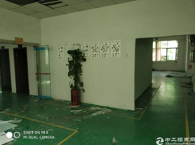 龙岗区同乐社区兰水路附近独院厂房招租