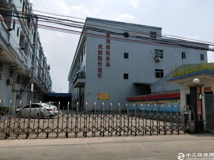 道滘原房东二楼厂房800平 地坪漆 现成办公室-图2