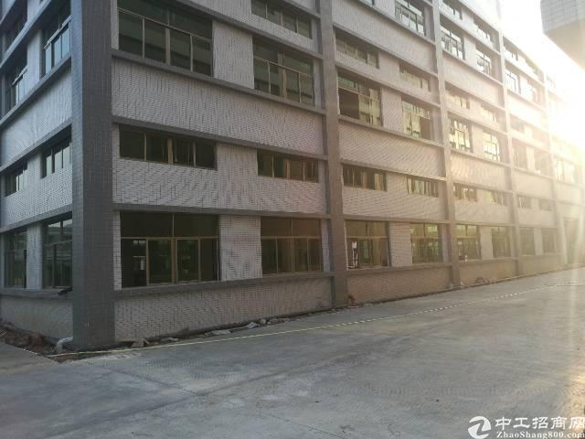 惠州小金口附近新出全新独院厂房45800平米-图3