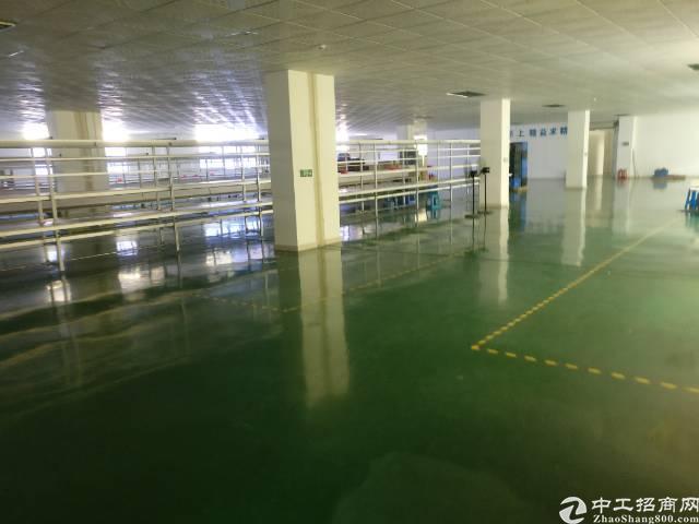 南浦路新出楼上1200平方 精装修厂房 独门独院 交通方便
