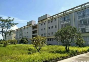 坪山大工业区新出独院厂房4层16000平米出租图片6