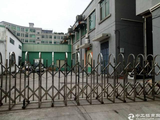 寮步原食品厂出租一楼2700平方高