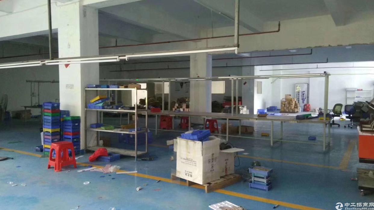 石岩外环新出厂房700平方米带装修-图4