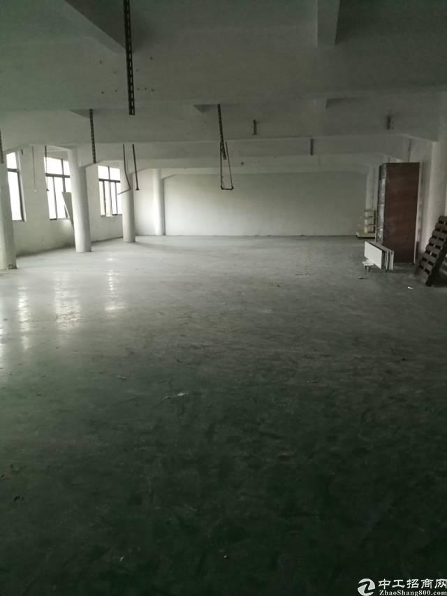 凤岗镇凤德岭新出带地坪漆、办公室、消防喷淋标准厂房850平