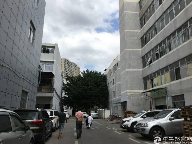 布吉沙湾海关新出1050平一楼零公摊红本厂房出租