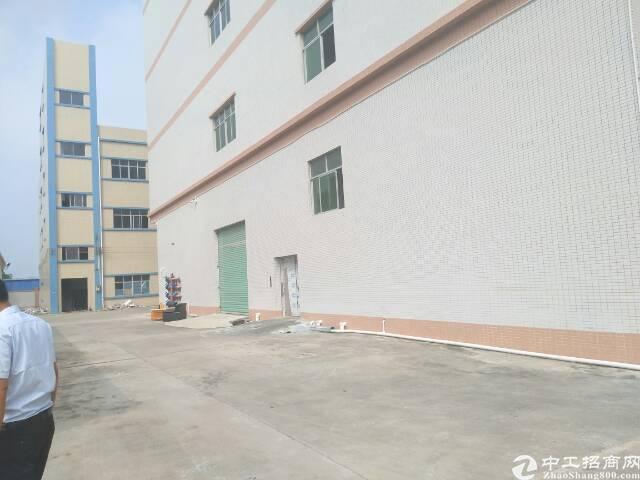 原房东标准楼房独院-图3