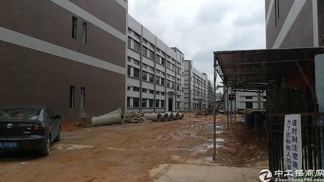 惠州小金口附近新出全新独院厂房45800平米-图2