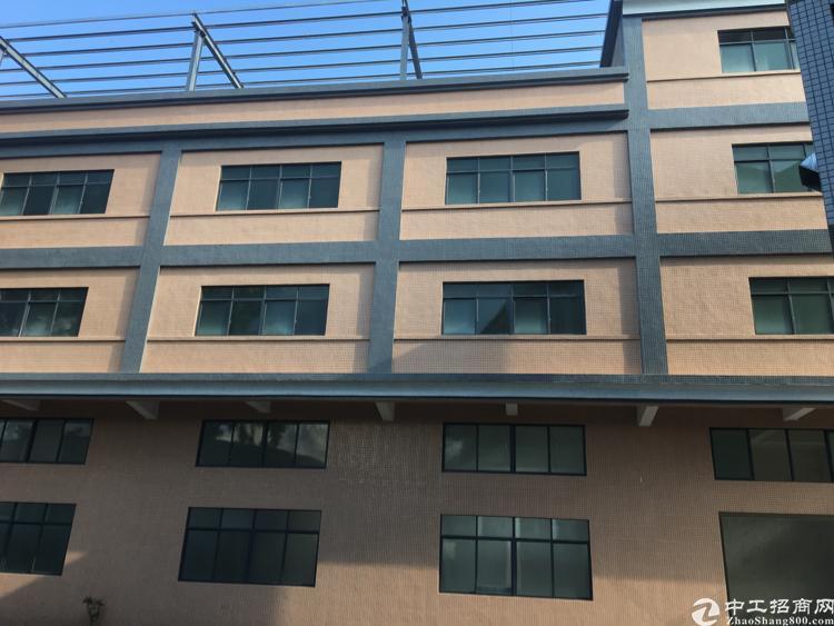 茶山原房东花园式独门独院标准厂房