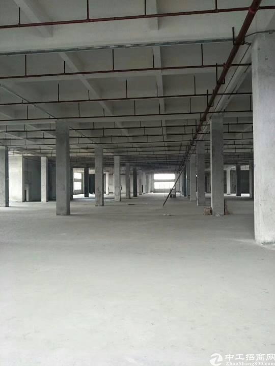 (出租)石岩红本带喷淋标准物流仓库厂房5000平米大小可分