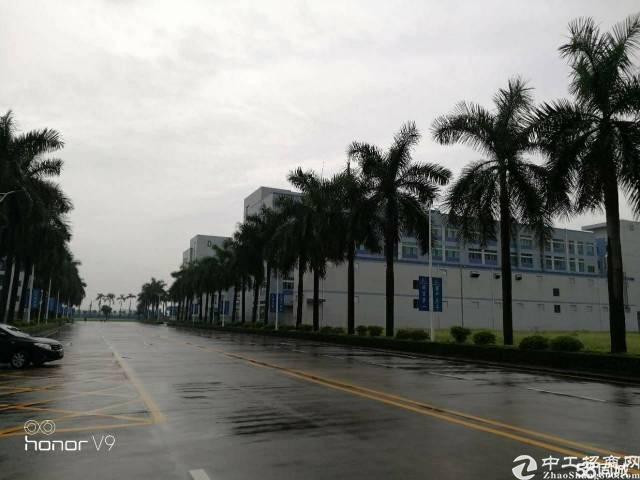 (出租)东莞靠深圳红本花园厂房38000平米