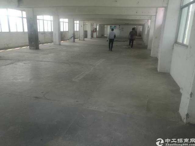 福永  福海5楼厂房出租650平方