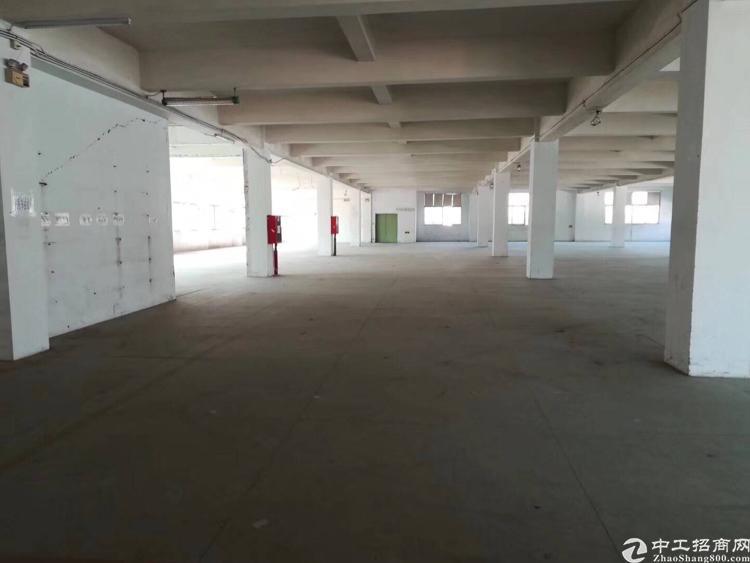 福永怀徳新出一楼六米高3500平方厂房出租-图3