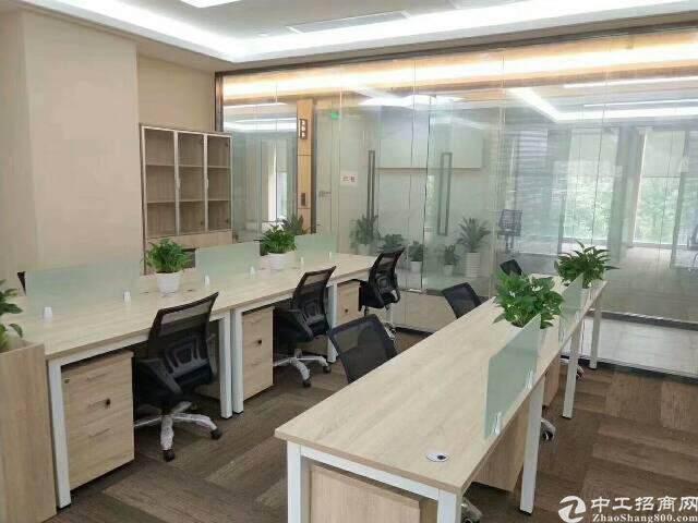 物业直租 家私齐全 拎包办公 双面采光 综合办公图片6